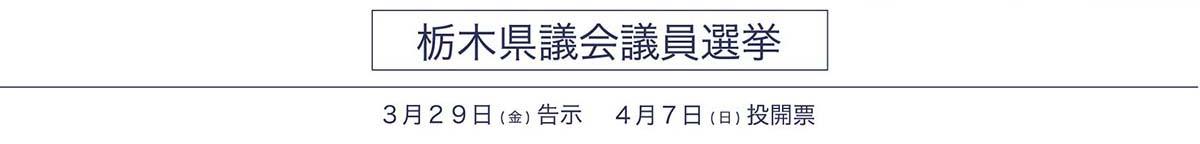 栃木県議会議員選挙