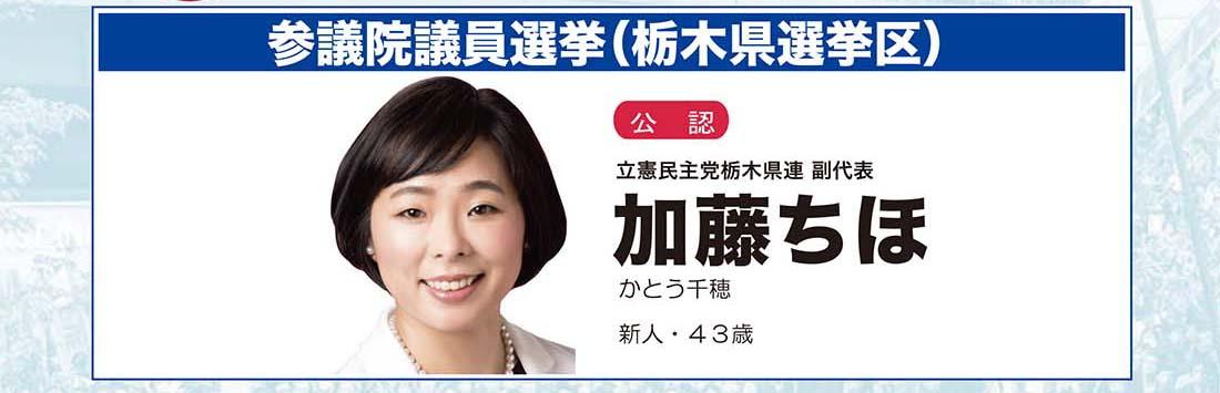 参議院議員選挙、栃木県選挙区、公認、加藤ちほ